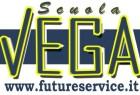 vega-500x324